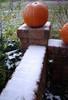http://diario.liquidoxide.com/archives/images/2944/pumpkin-snow-thumb.jpg