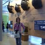 No museu de história natural, chegamos a tempo de pegar a competição de tartarugas escaladoras de parede. A da esquerda ganhou por uma cabeça de vantagem.